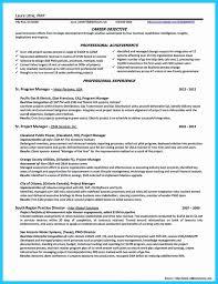 Unique Documentum Developer Sample Resume Collection Example
