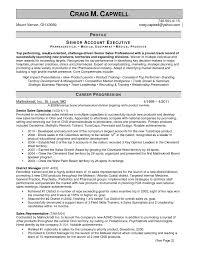 Resume Template Astonishing Sales Representative Resume Sample