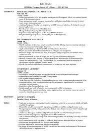 Informatica Architect Resume Sample 10 | Barcelonajerseys.net