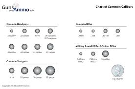 Diagram Of Common Bullet Sizes Hand Guns Guns Ammo Guns