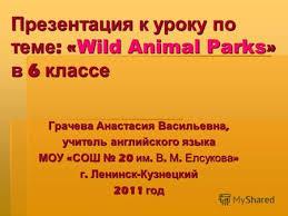 Презентации по предмету Иностранный язык для класса Скачать  Презентация к уроку по теме wild animal parks в 6 классе Грачева Анастасия