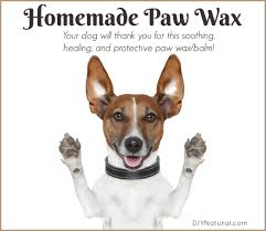 homemade all natural paw wax balm for dogs