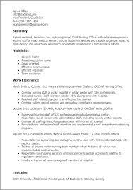 Chief Nursing Officer Sample Resume Chief Nursing Officer Sample Resume shalomhouseus 2