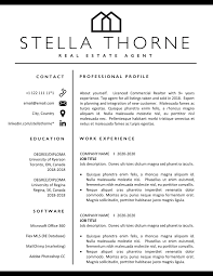 Resume Templates 2020 Download The Best Template