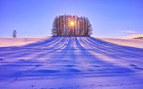 outdoor desktop backgrounds. Beautiful Winter Day Hill Cold Outdoor Trees Sun Snature Forest Landscape Desktop Wallpaper - 1680x1050 Backgrounds