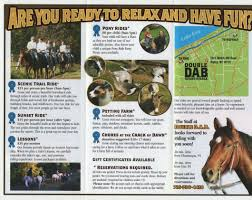 horseback riding lesson brochures