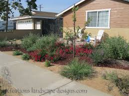 Small Picture This garden is a mixture of drought tolerant plants succulents