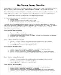 General Objectives For Resumes Resume Letter Directory