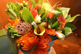 fall flowers for dreams and giveaway