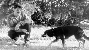 Understanding Dog Appeasement Signals Whole Dog Journal