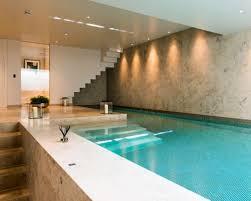 Indoor Basement Pool Houzz