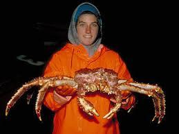 King Crab Leg Size Chart Alaskan King Crab Fishing Wikipedia
