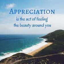 Beauty Appreciation Quotes Best of Best Quotes Appreciation Confetti Bliss