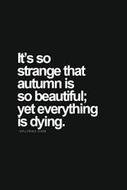 Beautiful Emo Quotes