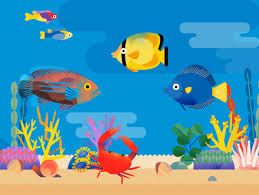 Prevent A Salty Situation Which Saltwater Fish Are