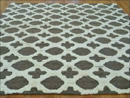 Outdoor Rug 8x10 Oval Rugs Pad Medium Size Braided Cheap Indoor