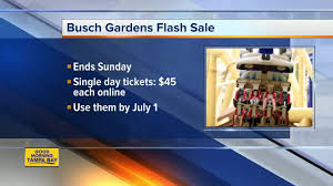 salute to summer flash busch gardens adventure island admission on until june 3