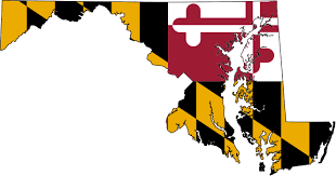 What Can Maryland Do If I Owe Taxes