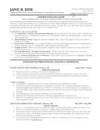 Examples Of Combination Resumes Magnificent Best Resume Layout 48 Luxury Examples Of A Combination Resume