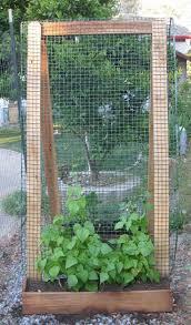 Vertical Kitchen Garden 17 Best Ideas About Vertical Vegetable Gardens On Pinterest
