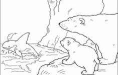 Kleurplaat Ijsbeer Uniek 20 Best Lars Der Kleine Eisbär Images On