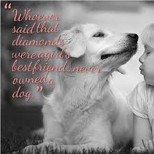 Quotes About A Girl And Her Dog