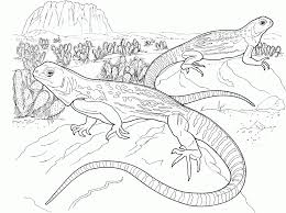 Small Picture Lizard Coloring Pages fablesfromthefriendscom