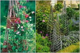 Small Picture 17 Best Upcycled Trellis Ideas For Garden Cool Trellis Designs
