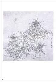 9787539330693 熱帯植物二 唯美白描精選 中国語絵画 下絵 大人の塗り絵
