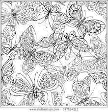 Detailed Butterfly Coloring Pages Plrappco