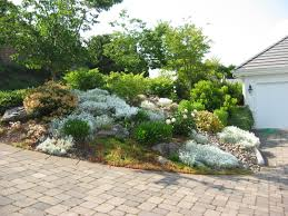 Small Picture Rock Garden Plants That Are Ideal For Coastal Areas front yard