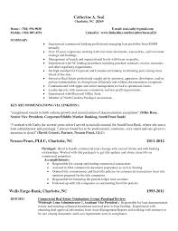 Simple Experienced Resume Sample With Key Recommendations Expozzer