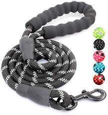 BAAPET 5 FT Strong Dog Leash with Comfortable ... - Amazon.com