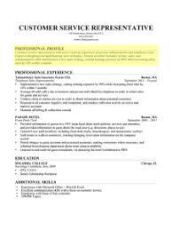 Professional Profile Paragraph Form Resume S A H M Pinterest