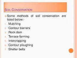 essay on wildlife conservation wildlife conservation essay samples