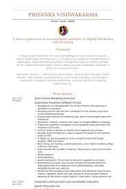 senior online marketing executive resume samples online marketing resume sample