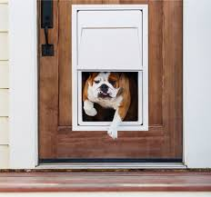 electronic dog doors. Best Electronic Dog Doors