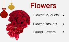 flowers to vijayawada guntur cakes to vijayawada guntur gifts to vijayawada guntur same day midnight home delivery service