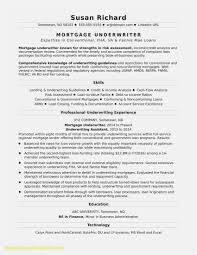 Free Download 54 Professional Resume Template Professional Free