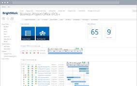 Getting Started With Project Portfolio Management Dashboards