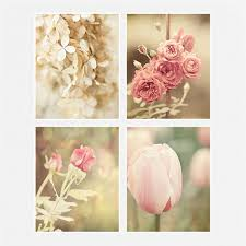 shabby chic floral print or canvas wrap set pink ivory cream cottage flower decor set of 4 fits ikea ribba gift for her roses tulips on wall art flowers photography with shabby chic floral print or canvas wrap set pink ivory cream