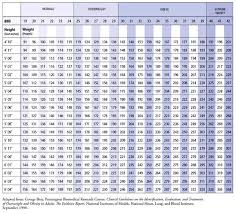 Nasm Body Fat Chart History Of Study And Education