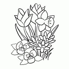 25 Het Beste Kleurplaten Bloemen En Vlinders Mandala Kleurplaat