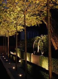 Low Voltage Outdoor Lighting Design Software Uplighting Luciano Giubbilei Addison Road Landscape