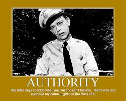 Barney Fife Quotes Custom Funny Barney Fife Quotes The Andy Griffith Show TV Series
