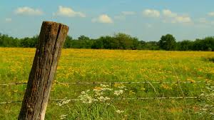 wooden farm fence. Kansas Summertime Yellow Farm Field And Old Wooden Fence Post. Stock Video Footage - Videoblocks
