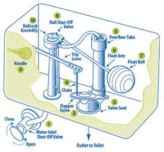 inside parts of a toilet tank. toilet tank parts diagram troubleshooting inside assembly kohler replacement of a