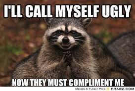 Needy Raccoon... - Meme Generator Funny via Relatably.com