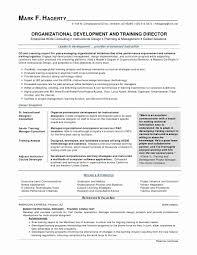 23 Pleasant Executive Summary Resume Samples Sierra