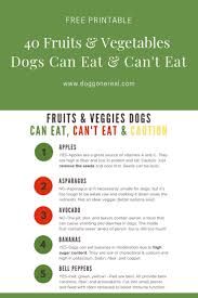 40 Fruits And Vegetables Dogs Can Eat And Cant Eat Free